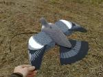 Flocked pigeon decoy